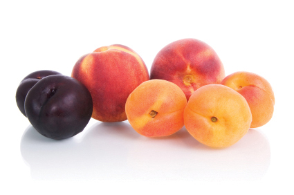 Principales alteraciones de la fruta de hueso en postcosecha | Webinar